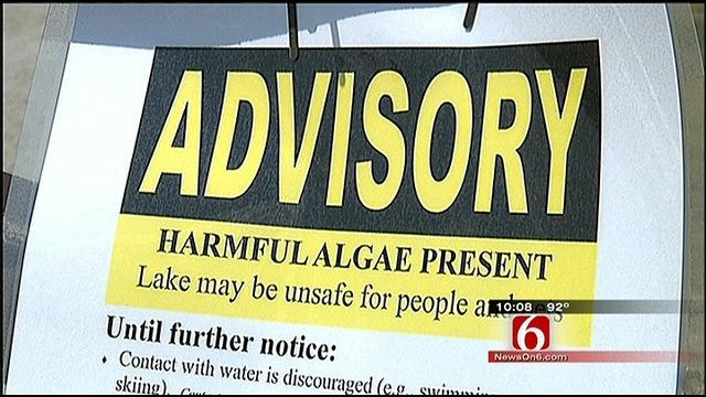 Corps Closes Fort Gibson Swim Beach Because Of Blue-Green Algae