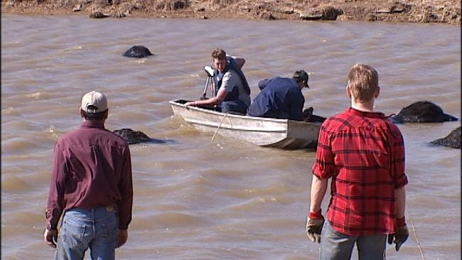 Warmer Weather, Thin Ice Prove Fatal To Oklahoma Cattle