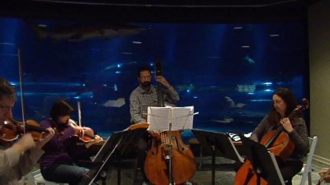 Students Can Get 'Symphony By The Sea' At Oklahoma Aquarium