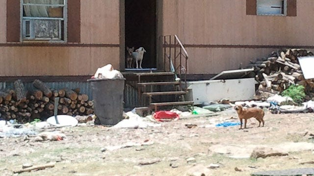 Couple Arrested For Animal Cruelty In Latimer County Rescue Group Raid