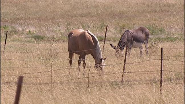 Stifling Heat Grips Oklahoma; No Relief In Sight
