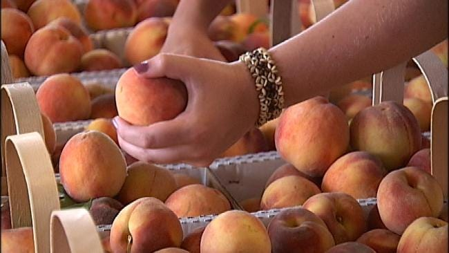 Harsh Weather Brings Small Peach Crop For Porter Growers