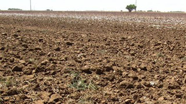 State Of Oklahoma Issues Weekly Drought Report