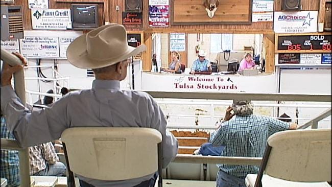 Drought, Heat Force Oklahoma Ranchers To Take Drastic Action