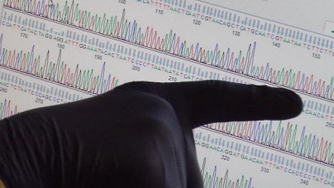 Tulsa High School Students Study Bug DNA