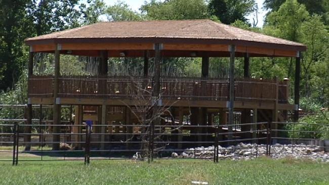 Tulsa Zoo's 'Giraffe Experience' Opens Friday