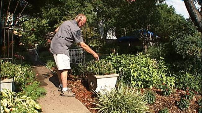 'Dirt Dude' Shares Advice On Protecting Our Plants In The Extreme Heat