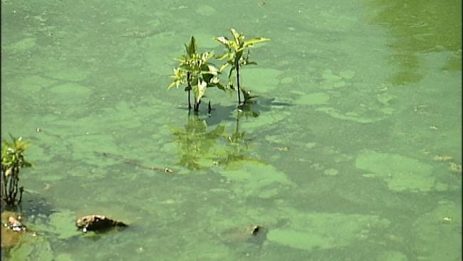 Tulsa Man Develops Rash After Swimming In Grand Lake