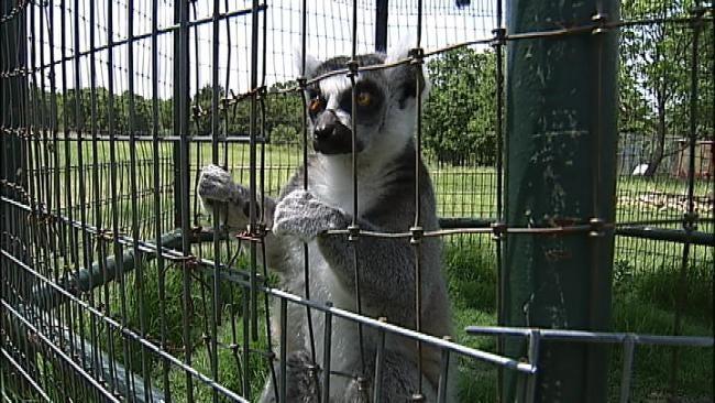Exotic Animal Park Still Closed After Pawnee County Ammonia Leak