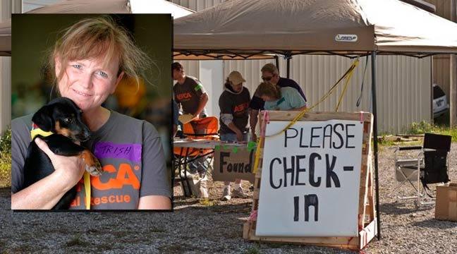 Joplin Holds Mass Adoption For Pets Displaced In Tornado