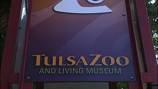 Tulsa Zoo Acquires Two Female Giraffes