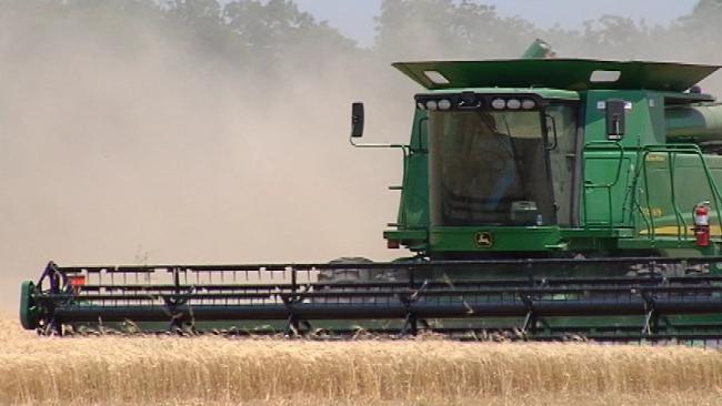 Despite Weather Challenges, Wheat Crop In Northeast Oklahoma 'Good'