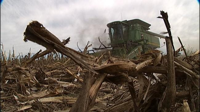 Oklahoma's Extreme Weather Year Brought Floods, Fire And Everything In Between