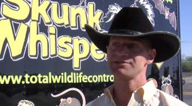 Get Sneak Peak Of Skunk Whisperer Reality Show Sunday