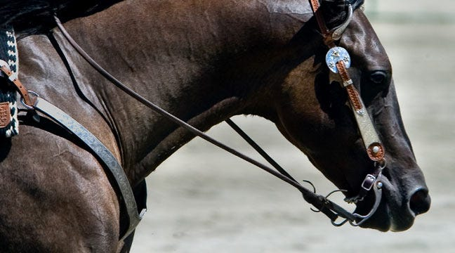 Top Competitors At Expo Square For Tulsa Reining Classic