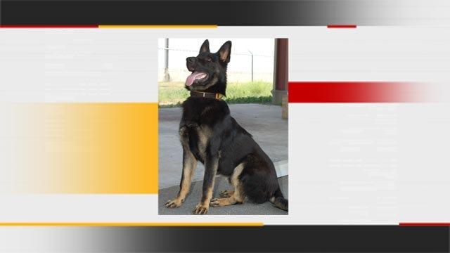 Investigation Underway Into Killing Of Panama, Oklahoma Police Dog