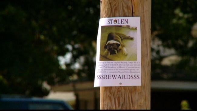 Oklahoma Soldier's Stolen Dog Returned Safe