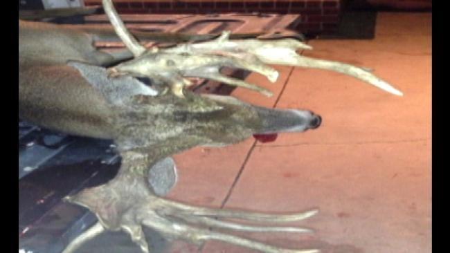 Okmulgee County Teen Bags 30-Point Buck