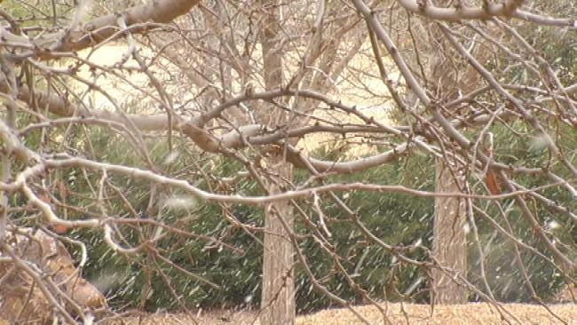 Eastern Oklahoma Could See An Inch Of Snow Friday