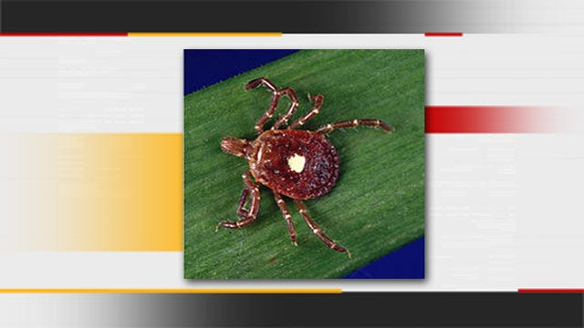 Bite Of Oklahoma's Lone Star Tick May Spark Meat Allergy