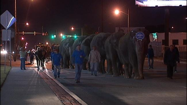 Circus Elephants Parade Through Downtown Tulsa