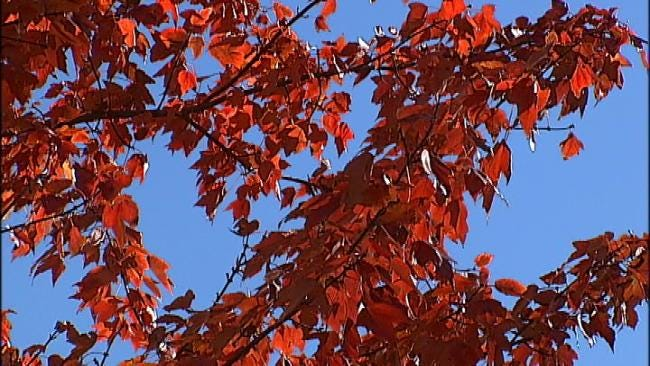 Fall Brings Out Beautiful Colors In Eastern Oklahoma