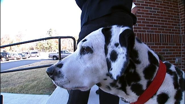 Tango The Fire Safety Dog Has Last Dance At Tulsa Elementary School