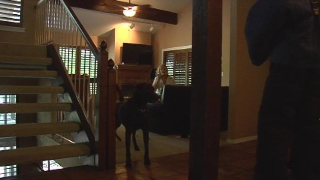 Would Your Dog Protect You From An Intruder?