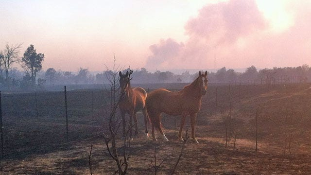 Oklahoma Wildfire Victims Have More Time To Apply For Assistance