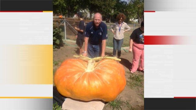 Bartlesville Man Hopes Giant Gourd Is A Winner