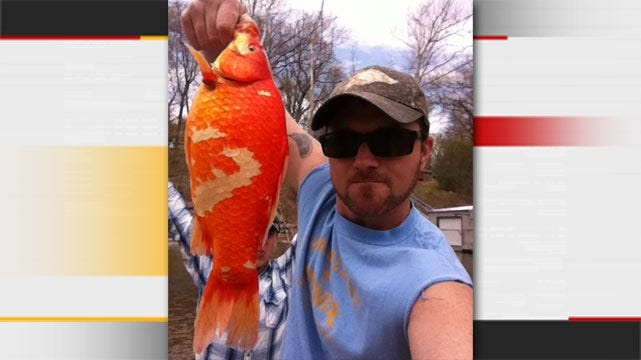 Tulsa Man Catches A Fish Not Common To Oklahoma Waters