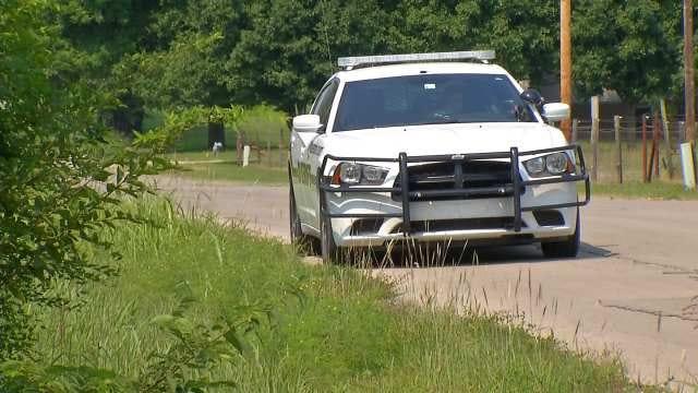 Deputies Seize 'Malnourished' Horses, Dogs South Of Bartlesville