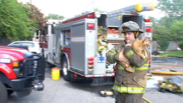 Tulsa Firefighters Save Pets From Fire At Balboa Park Apartments