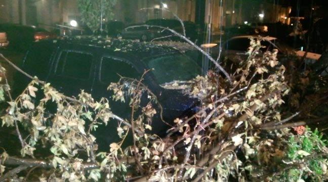 Ice-Covered Limb Crashes On Tulsa Woman's Car