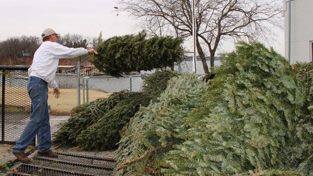 GRDA Wants Your Christmas Trees For Its 'Crappie Christmas' Program