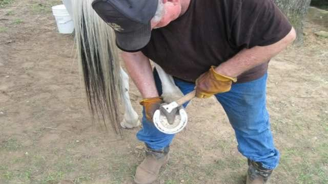 Oklahoma Farrier Back In Business With Help Of Veterans Group