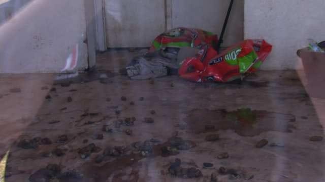 Abandoned Barnsdall Dog Shelter Causing Grief For Neighbors