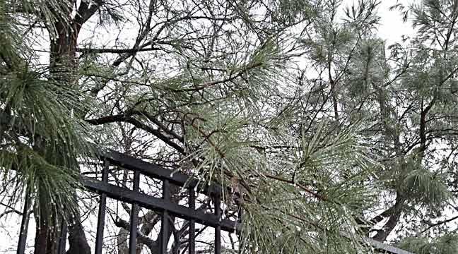 Northeastern Oklahoma Under Winter Weather Advisory