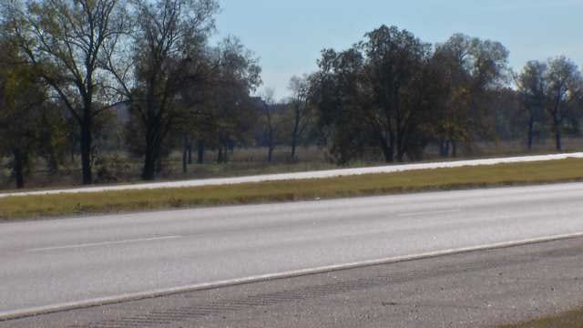 Loose Livestock Risks Lives Of Drivers; Negligence Hard To Prove, OHP Says