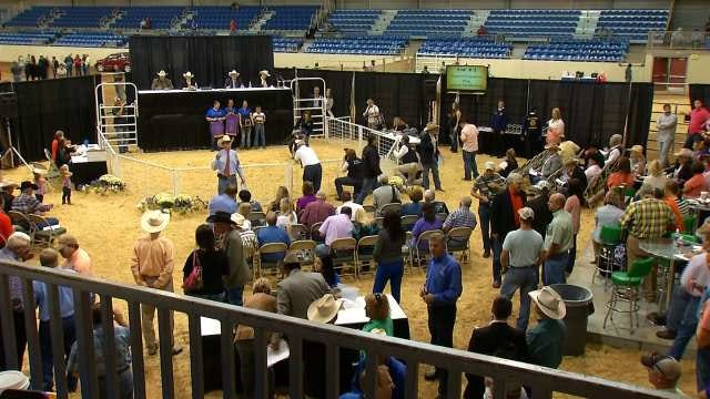 Livestock Shows Begin At Tulsa State Fair