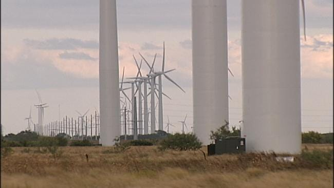 Study: Wind Farms Killed 67 Eagles In Five Years