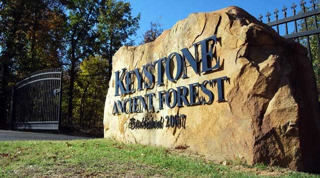 Sand Springs To Hold Trail-Building Workshop In Keystone Ancient Forest