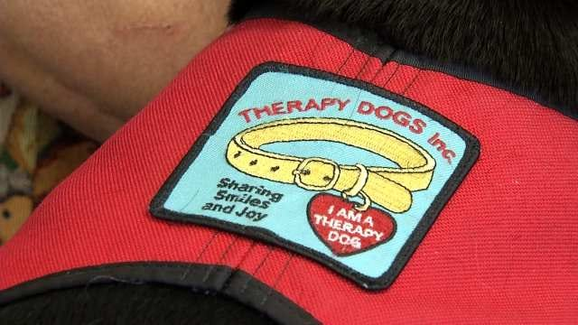 New Law Allows Children To Use Therapy Dogs In Oklahoma Courts