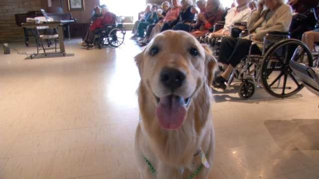 Birthday Bash Celebrates Tulsa Retirement Community Mascot Simone