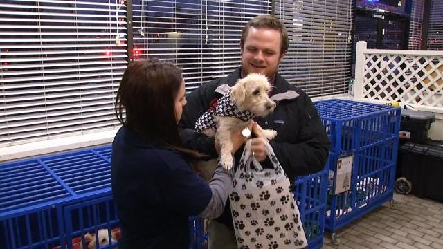 Tulsa Humane Society Hopes To Send Animals Home For Holidays