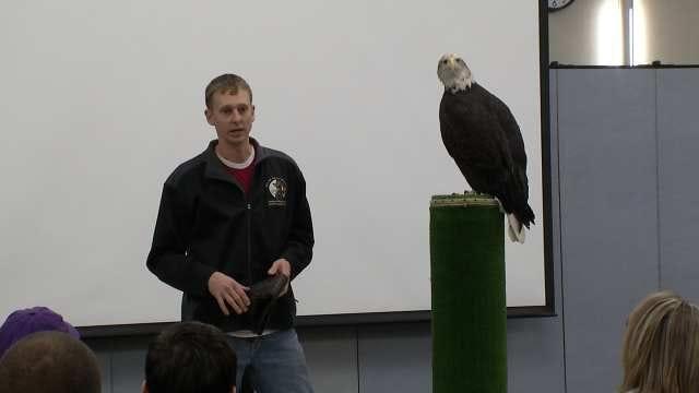 Tulsa Eagle Days Event Focuses On Raptors