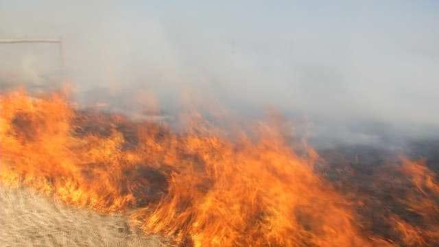 Grass Fires Burn In Northeastern Oklahoma