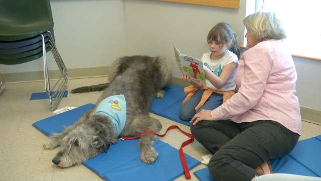 Sumo Wrestlers And Dogs Encourage Oklahoma Students To Read