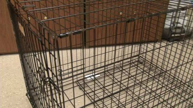 Rogers County Man Arrested For Locking 4-Year-Old In Dog Cage