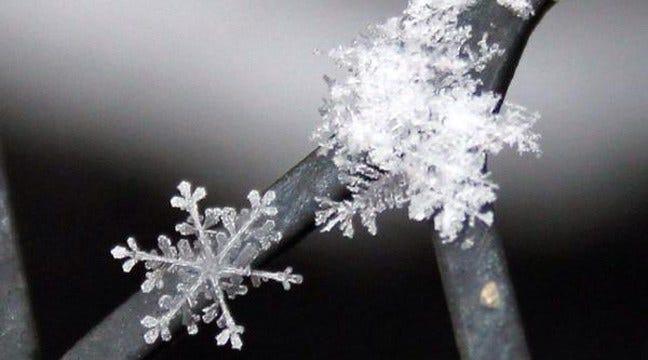 News On 6 Viewers Share Winter Snow Photos